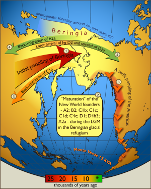 Map showing migration of humans from Asia to the Americas