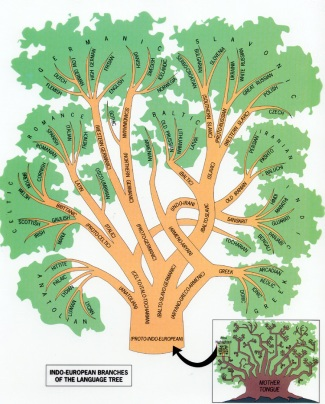 The Indo-European Branches of the Language Tree