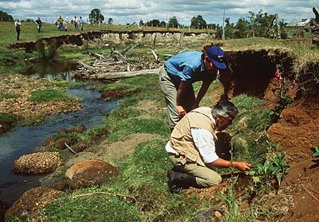 Monte Verde Chile Anthropology Net