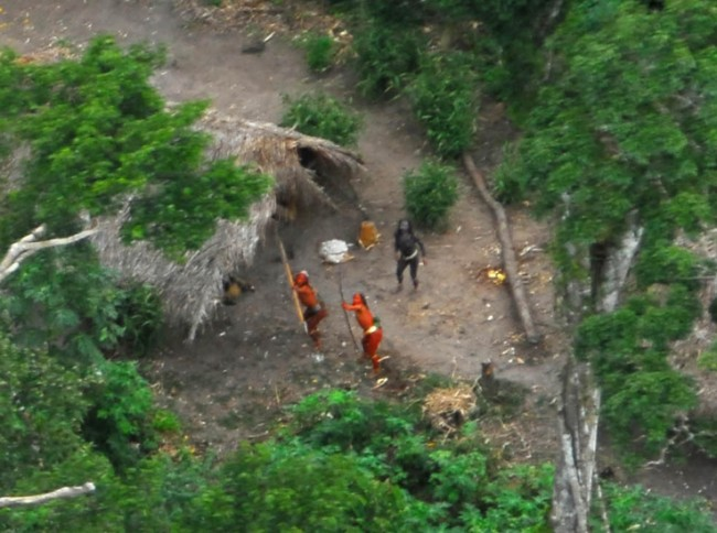 Uncontacted People from the Envira Region at the Brazilian-Peruvian Border