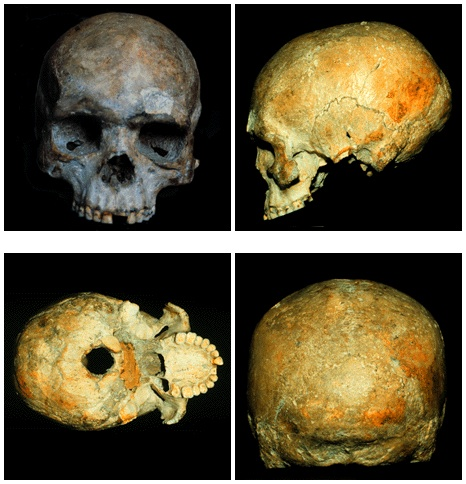 The Liujiang Cranium