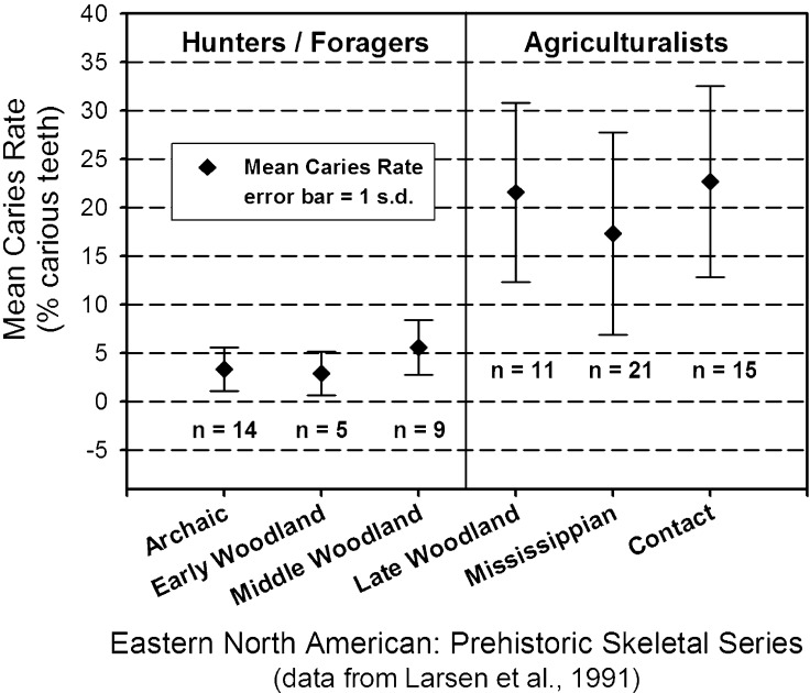 Dental caries and subsistence in prehistoric north America.