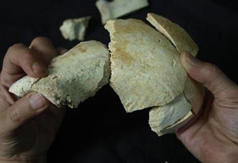 atapuerca july 09 heidelbergensis