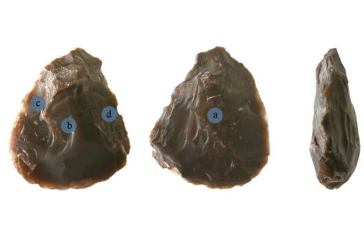 The flint biface. The blue dots represent the location of the fatty residue.