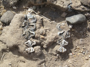 The mandible of a hippo was also discovered at the Ledi-Geraru site. The mandible is still in the ground there, said study researcher Brian Villmoare of the University of Nevada Las Vegas. (Photo credit: Brian Villmoare)