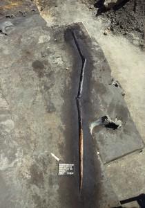 Schöningen Speer VII im Sediment 1997 © P. Pfarr NLD