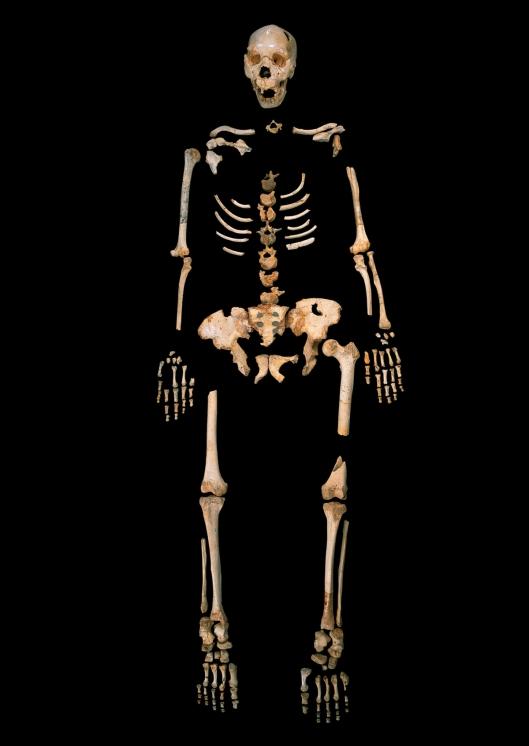 sima-de-los-huesos