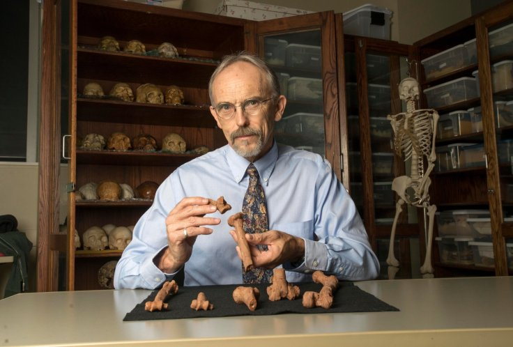 John Kappelman, a paleoanthropologist at the University of Texas at Austin, with 3-D printouts of Lucy's skeleton. Credit Marsha Miller/University of Texas at Austin
