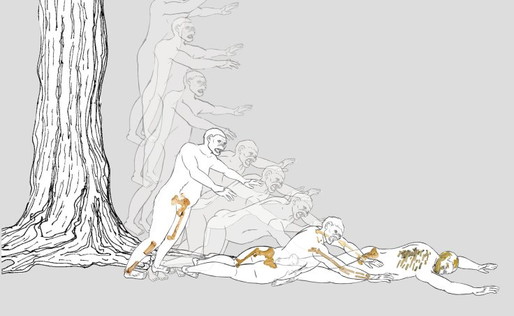 An image from a video animation depicting a hypothetical scenario for Lucy's fall out of a tree. Credit Valerie Lopez/John Kappelman