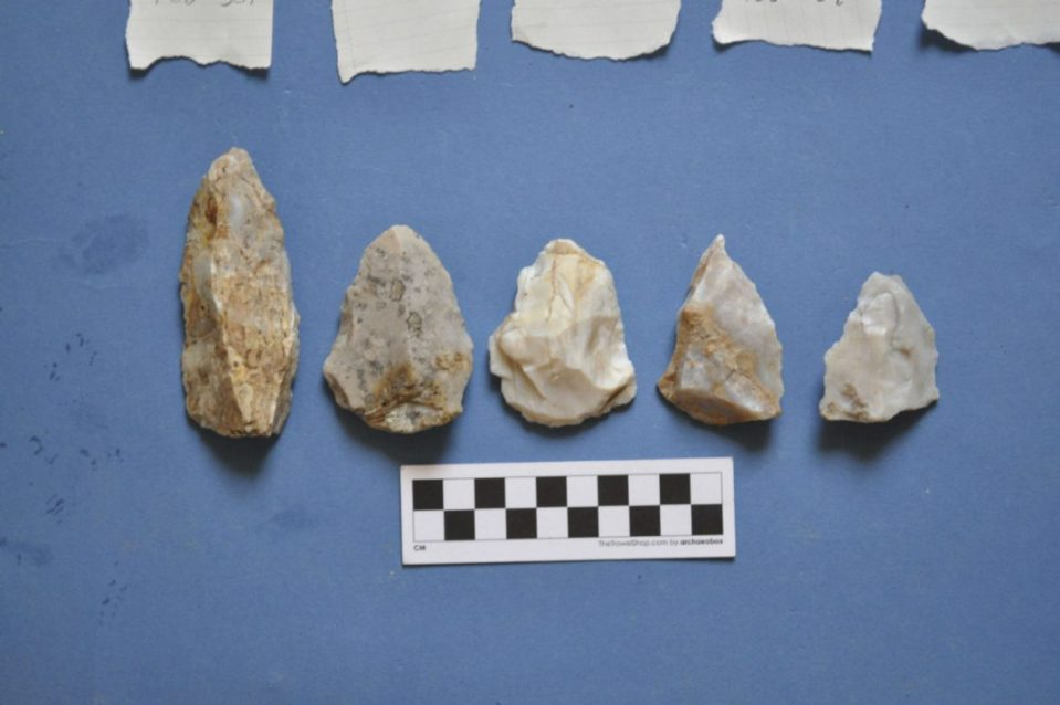 These Mousterian spearheads, a classic Neanderthal tool type, were excavated from the Stelida archeological site on the Greek island of Naxos by a team co-directed by Tristan Carter of McMaster University. The Stelida site is critical to resolving a major controversy over whether Neanderthals and other hominins were capable of voyaging by sea.  (STELIDA NAXOS ARCHAEOLOGICAL PROJECT)