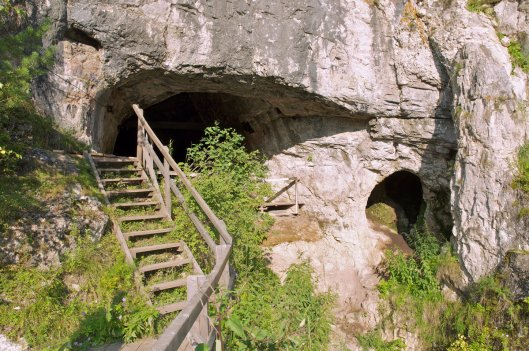 The entrance to Denisova Cave in Siberia, where a tooth was discovered in 1984. BENCE VIOLA