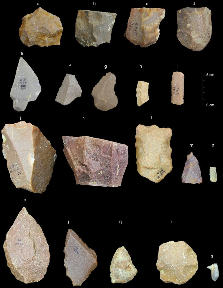 Stone tools recovered at the Attirampakkam site in India from the middle paleolithic — including Levallois technology. Photo: Sharma Centre for Heritage Education, India