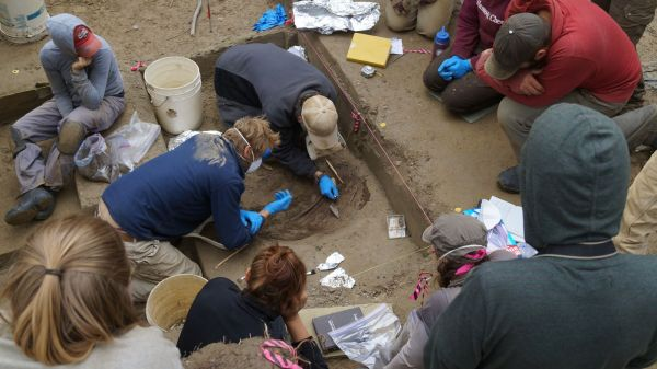 The excavation of one of the ancient infants buried at the Upward River Sun site in Alaska. Photo by Ben Potter