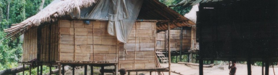 In a small Malaysian village, some residents speak a language that linguists had never before identified. It has now been documented, under the name Jedek, by Swedish researchers. Niclas Burenhult/Lund University