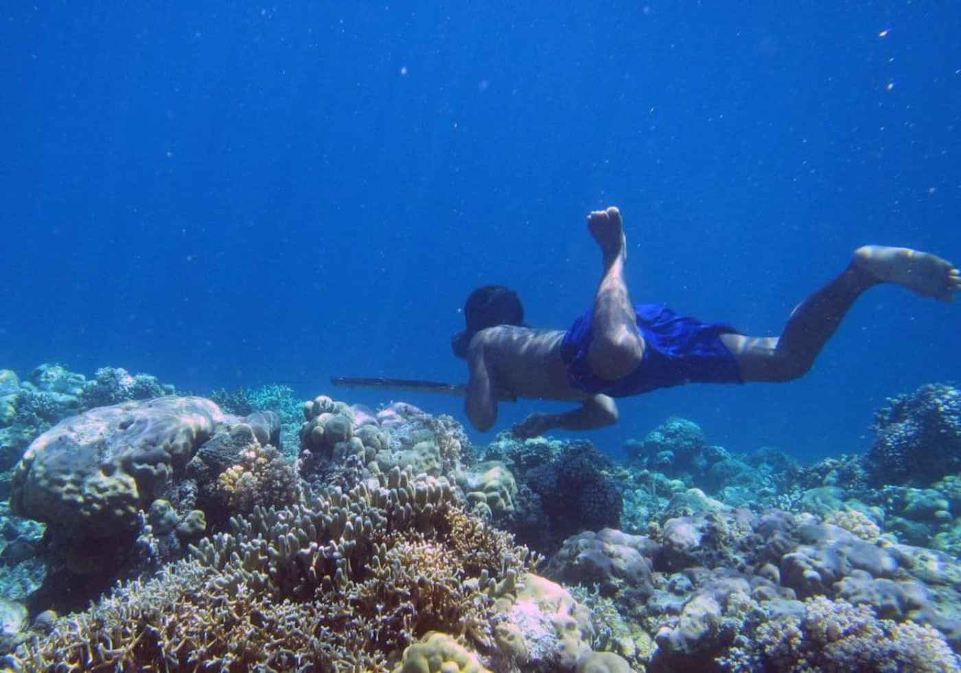 A Bajau diver hunts fish underwater using a traditional spear, off the islands of Indonesia. (Melissa Ilardo/AFP)